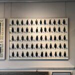 papier, szkło, metalowa rama anodowana kolor srebrny: Magdalena Kucharska-Ptaki-100x70cm-Ptaki-2012